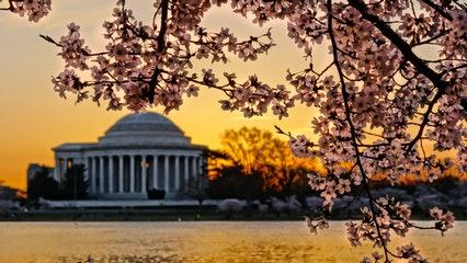 Jefferson Memorial Tours