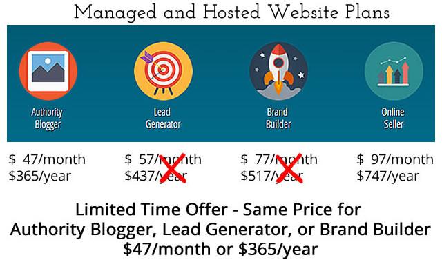 Webiste Pricing